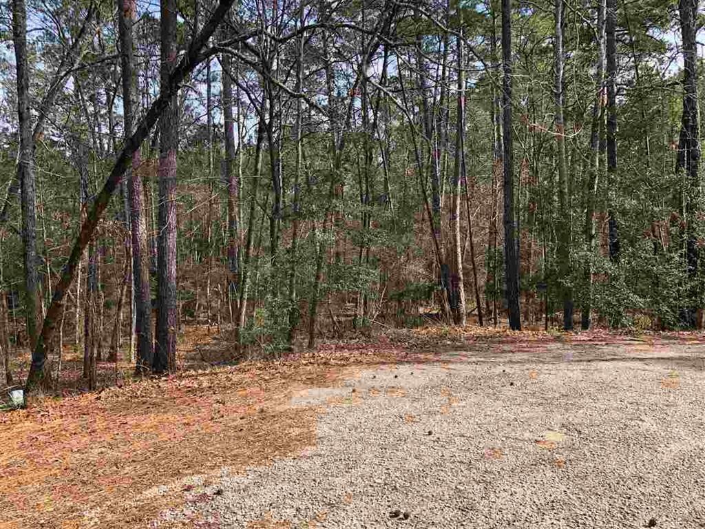 000 Bogey Lane Property Photo - Brookeland, TX real estate listing