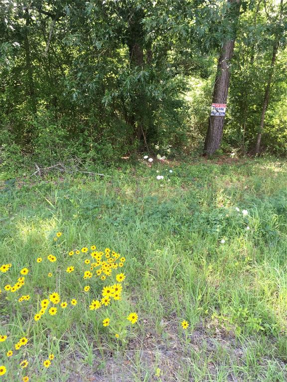 0 Hwy 59 Property Photo - Corrigan, TX real estate listing