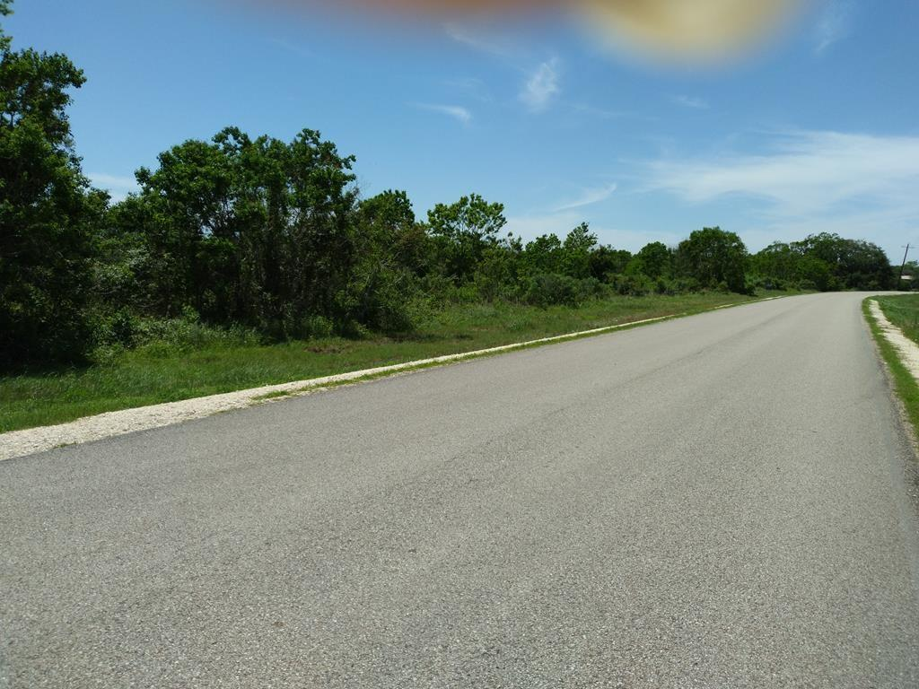 Lot 43 County Road 208 Property Photo