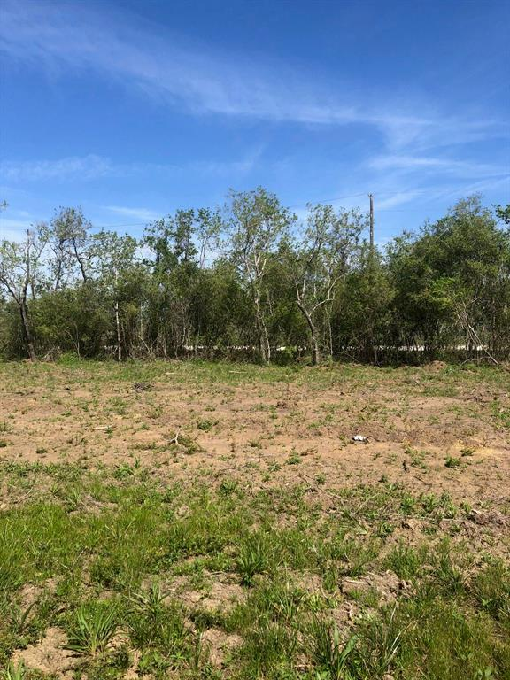 2634 County Road 117 Property Photo - Raywood, TX real estate listing