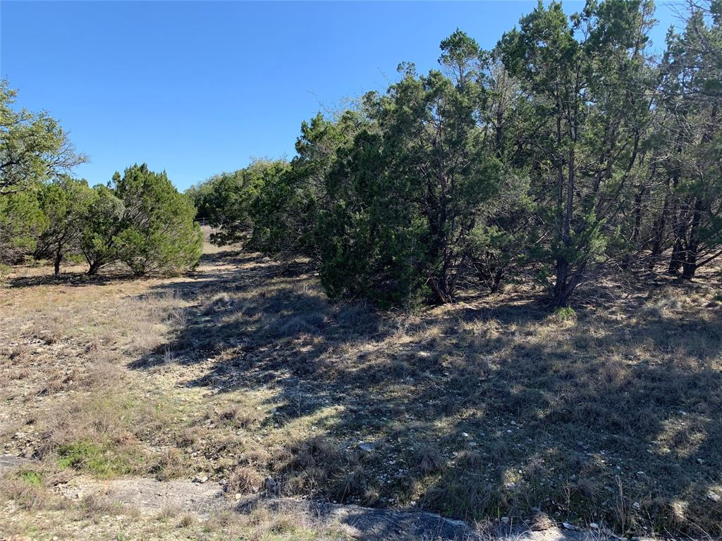 508 Flanders Property Photo - Fischer, TX real estate listing