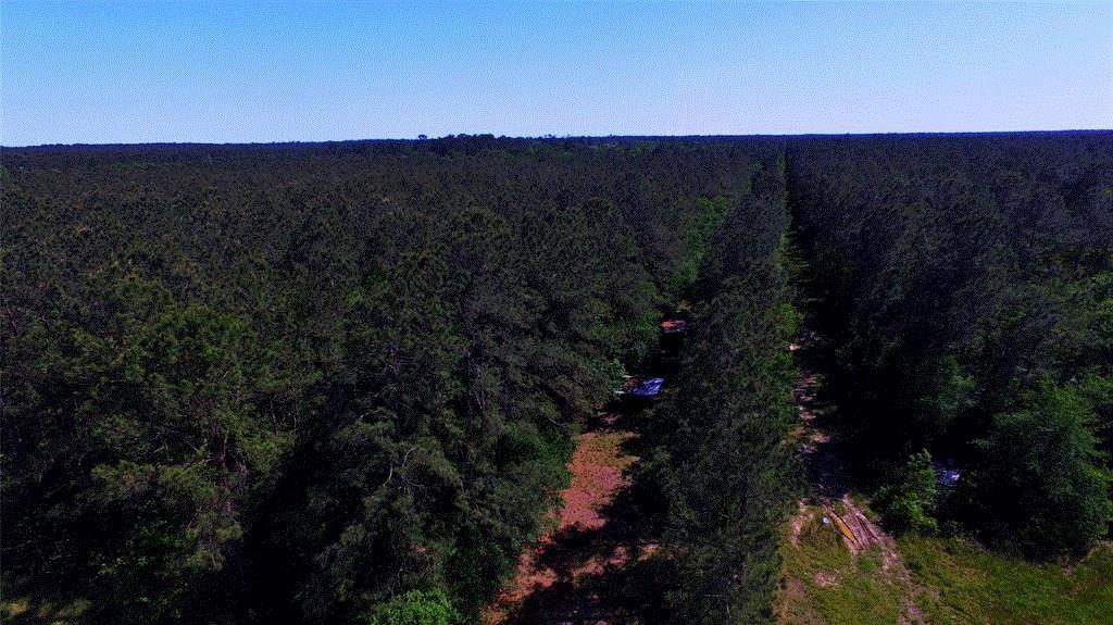 00 Hwy 61 West Off, Devers, TX 77538 - Devers, TX real estate listing