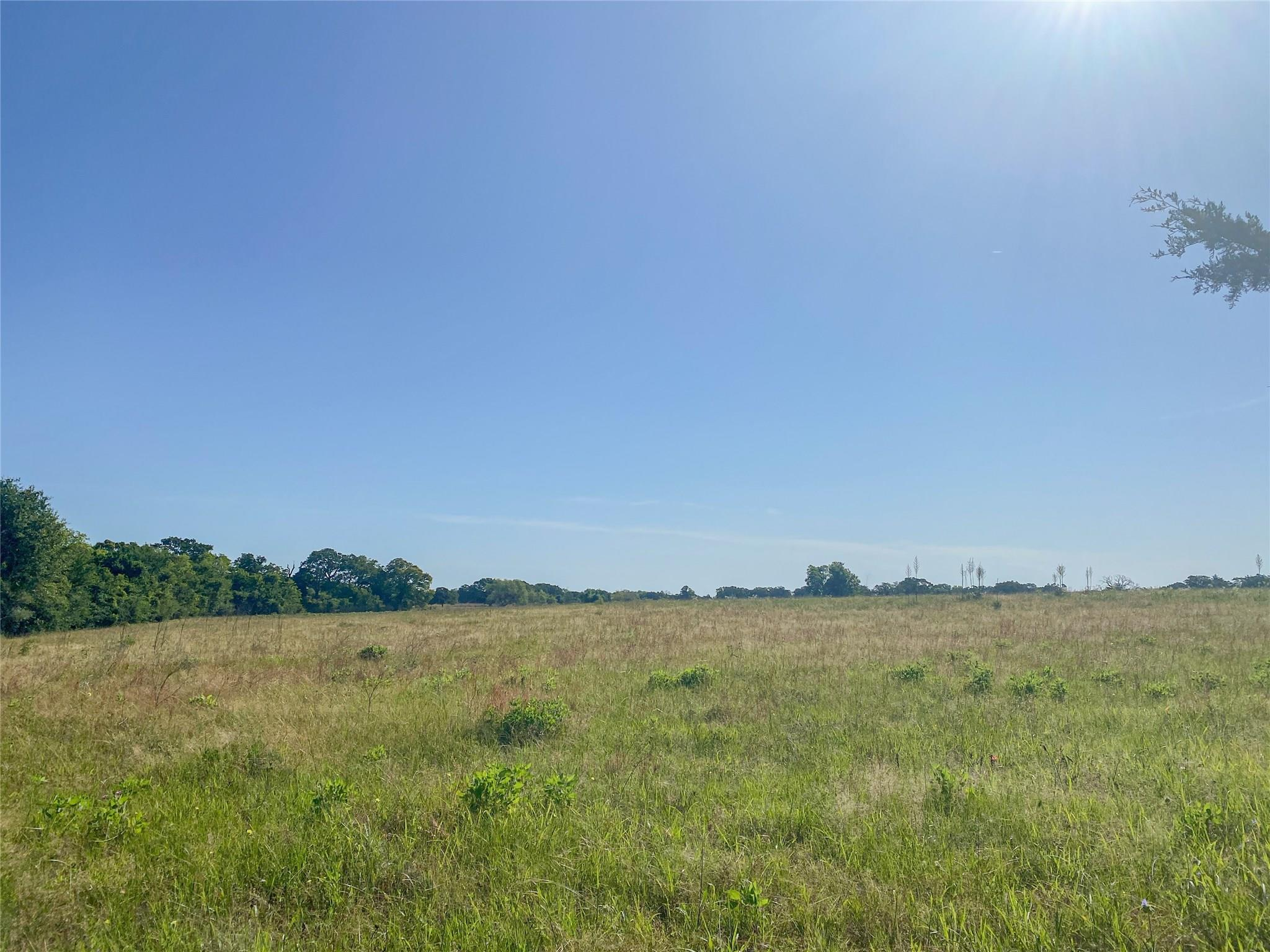 00000 County Road 227 Property Photo - Huntsville, TX real estate listing