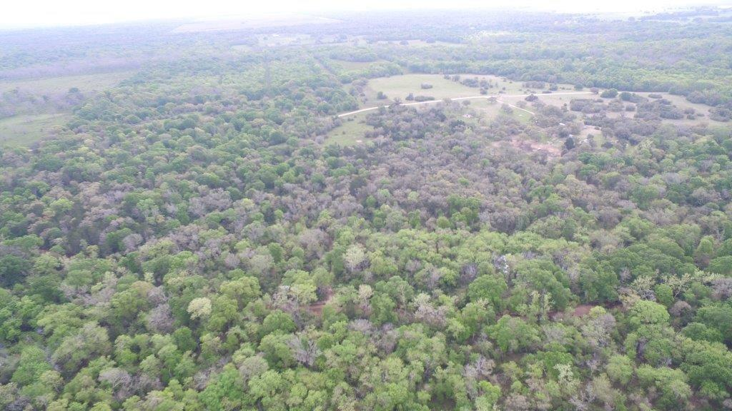 000 County Road 14a, Hallettsville, TX 77964 - Hallettsville, TX real estate listing