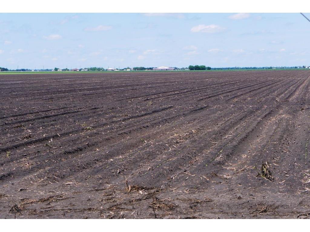 0000 Bj Dusek Road Property Photo - Wallis, TX real estate listing