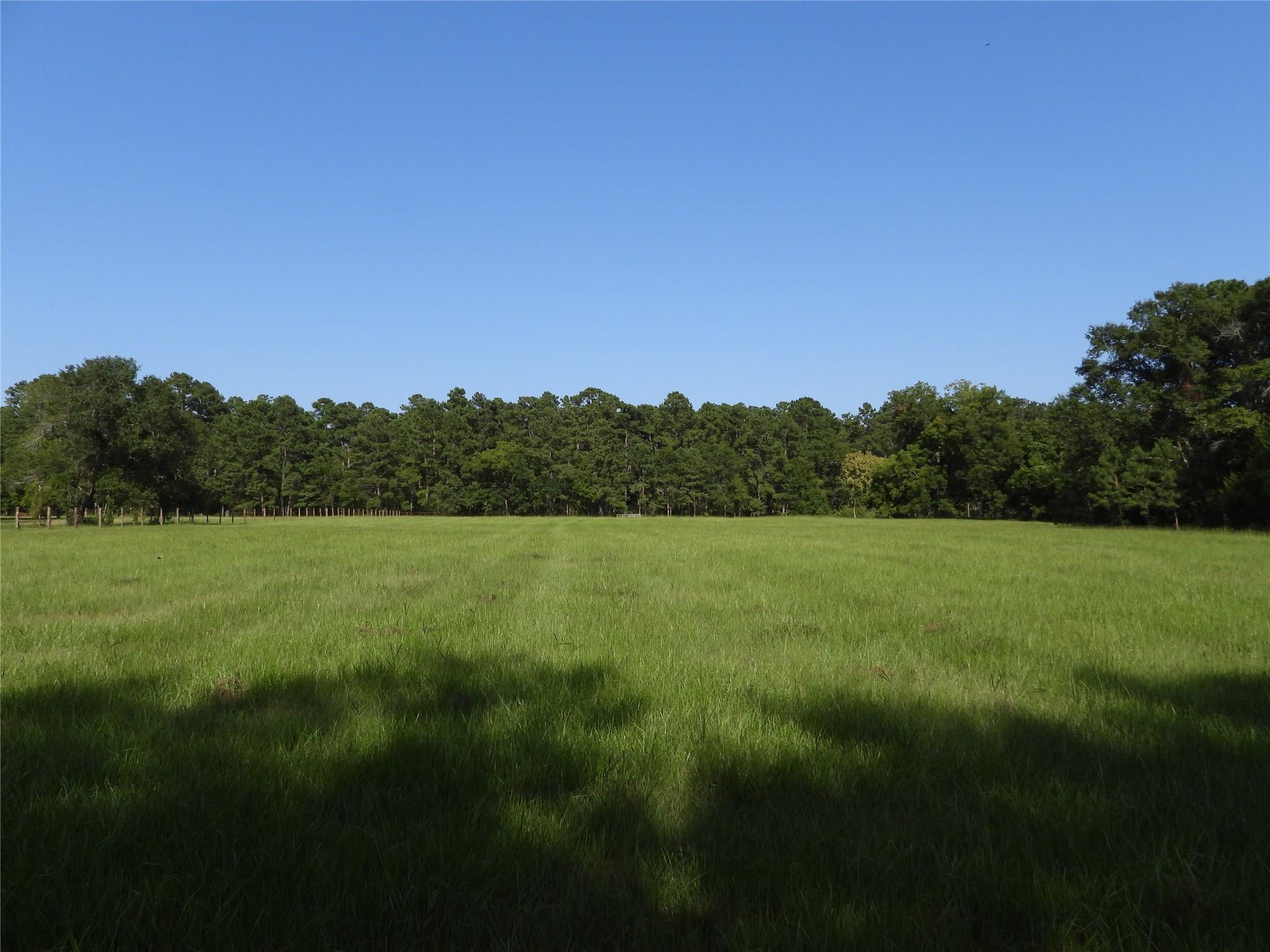 18855 TBD 2 BETHEL Road Property Photo - Richards, TX real estate listing
