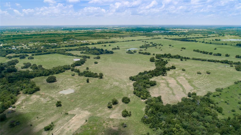 0250 CR 446 Property Photo - Navasota, TX real estate listing