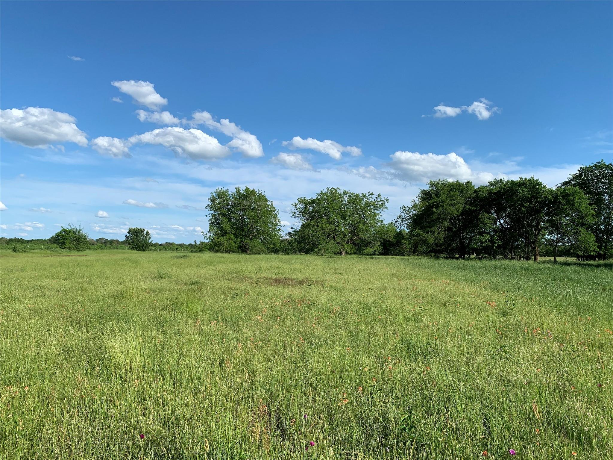 TBD LCR 454 Property Photo - Groesbeck, TX real estate listing