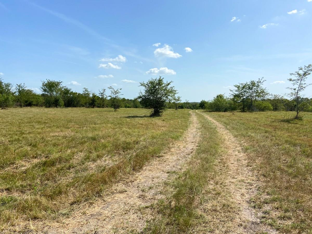 0000000 Morgan Spur Property Photo - Huntsville, TX real estate listing