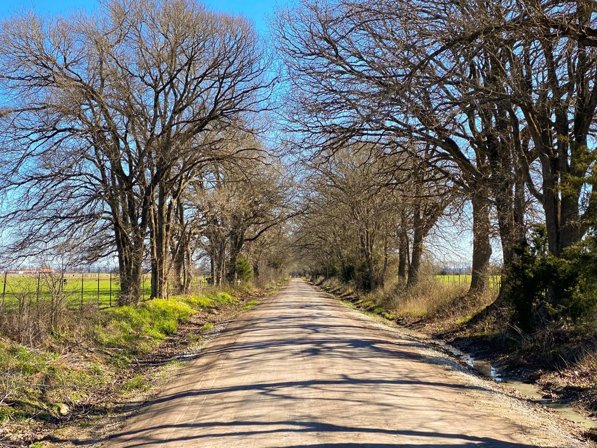 000 CR 234 Property Photo - Oakwood, TX real estate listing