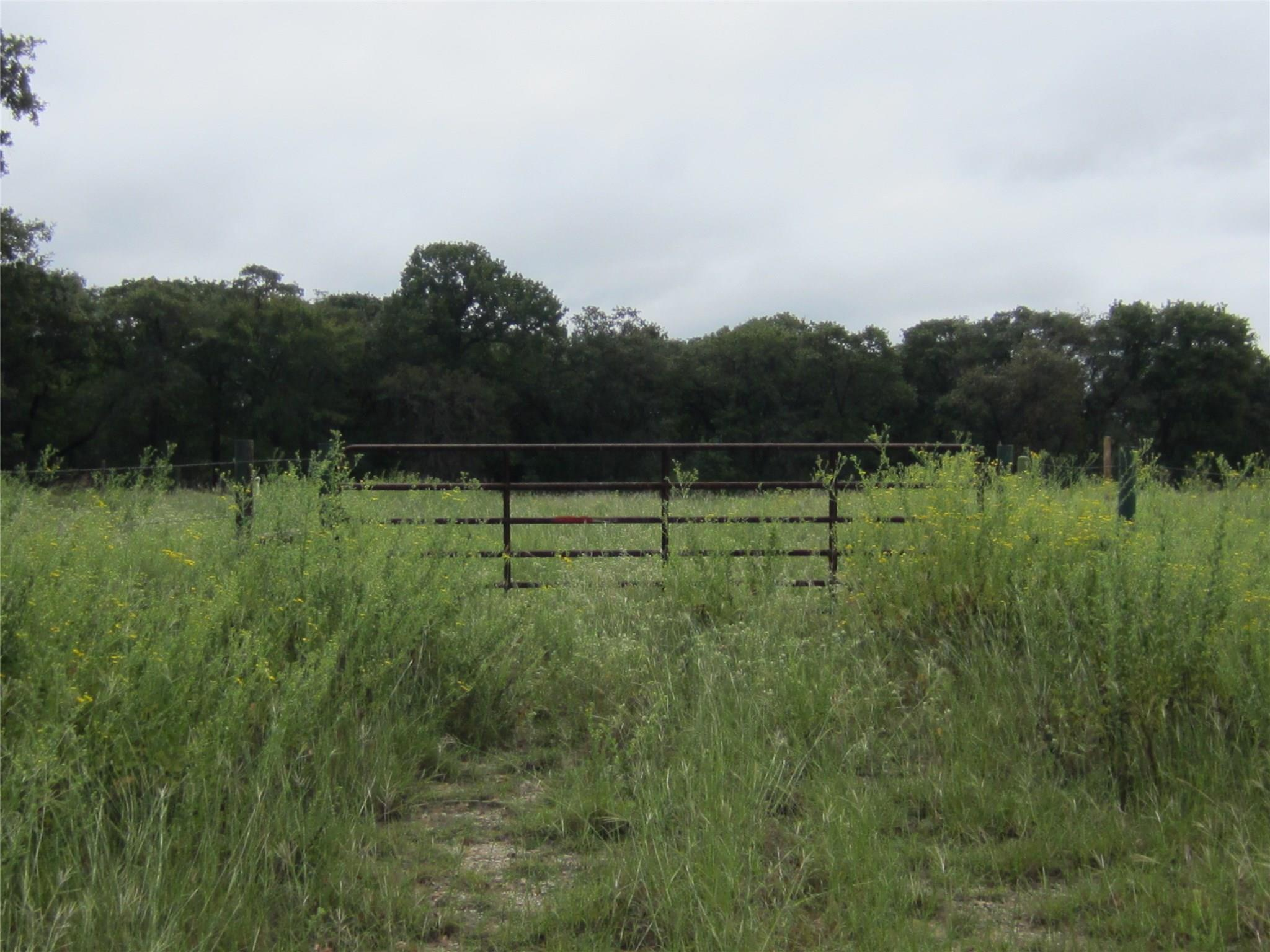 TBD FM 3371 Property Photo - Groesbeck, TX real estate listing