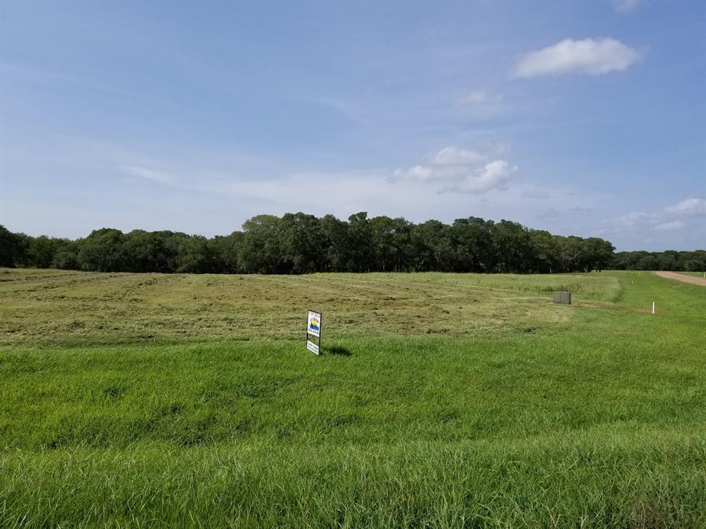 87 River Tree Drive Property Photo - Blessing, TX real estate listing