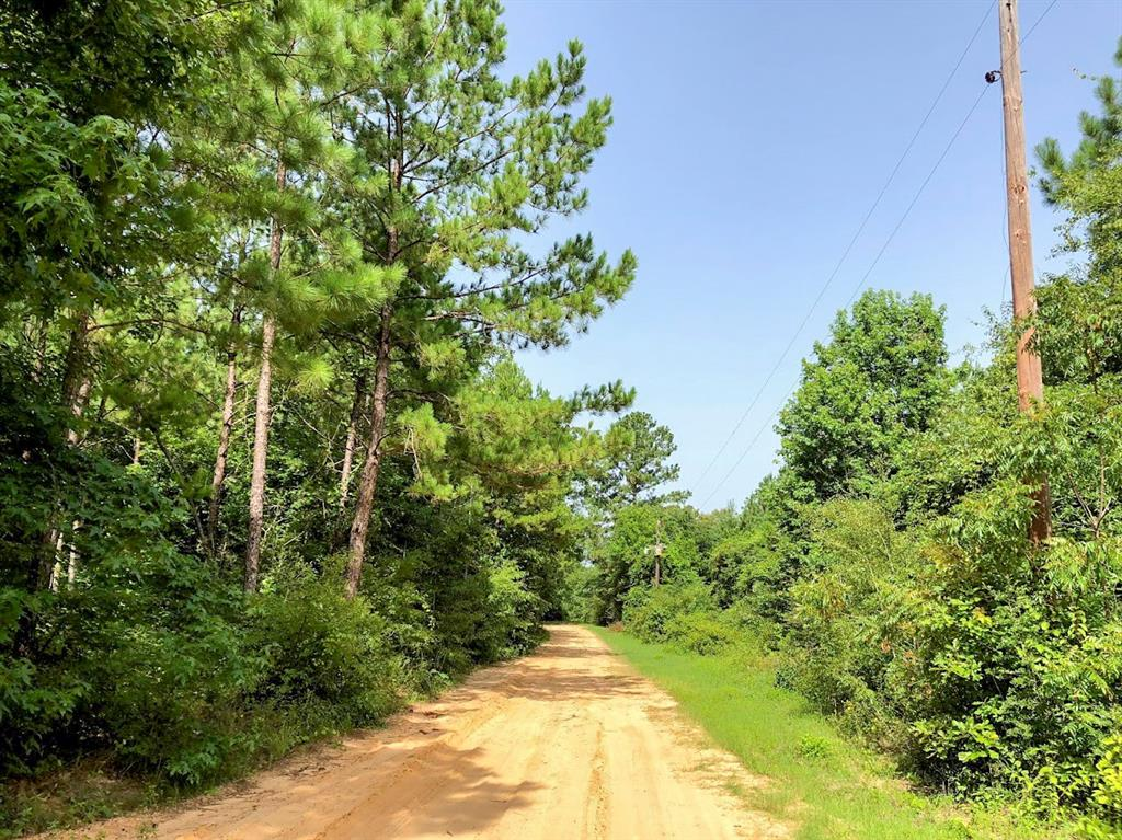00000 Fm 1012 Property Photo - Newton, TX real estate listing
