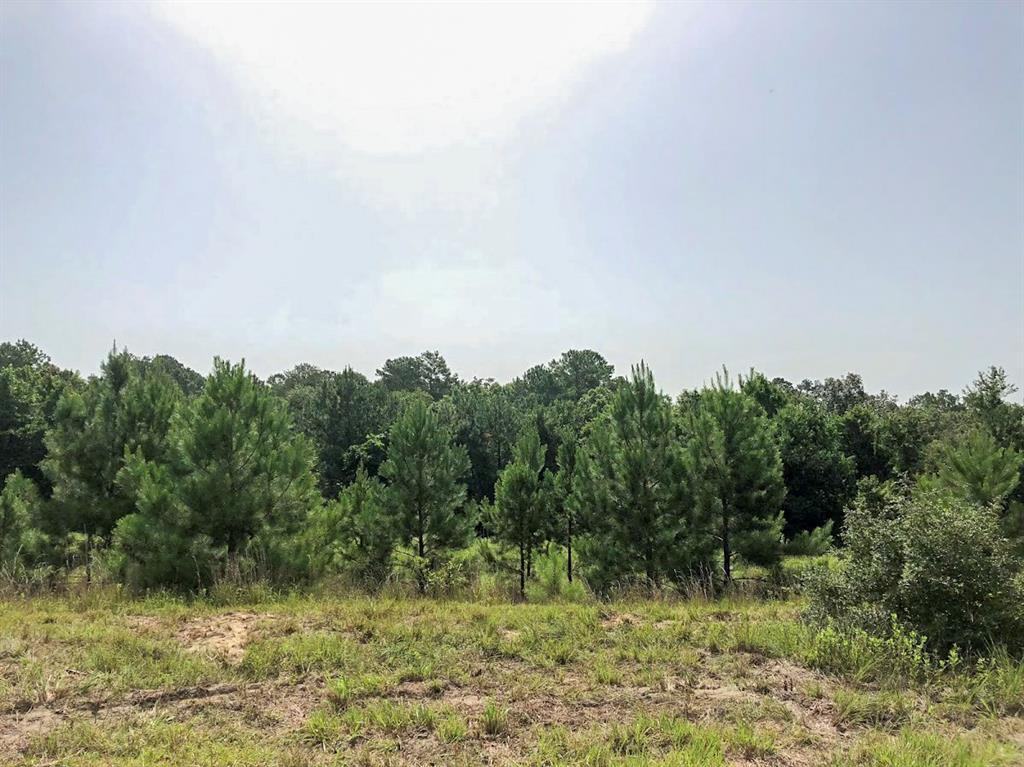 00000 Fm 1012, Newton, TX 75966 - Newton, TX real estate listing