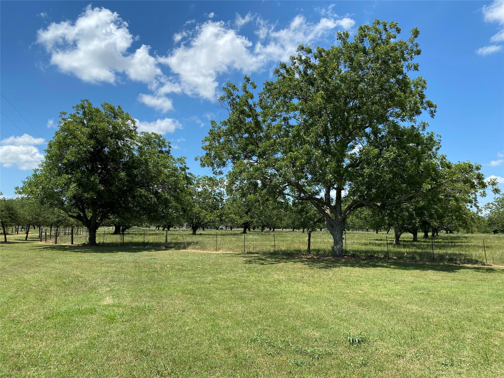 3151 Orchard Drive Property Photo - Wharton, TX real estate listing