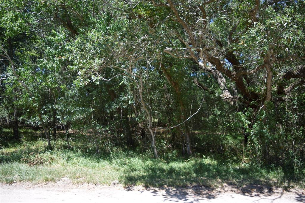 00 Lakeview Drive Property Photo - Clemville, TX real estate listing