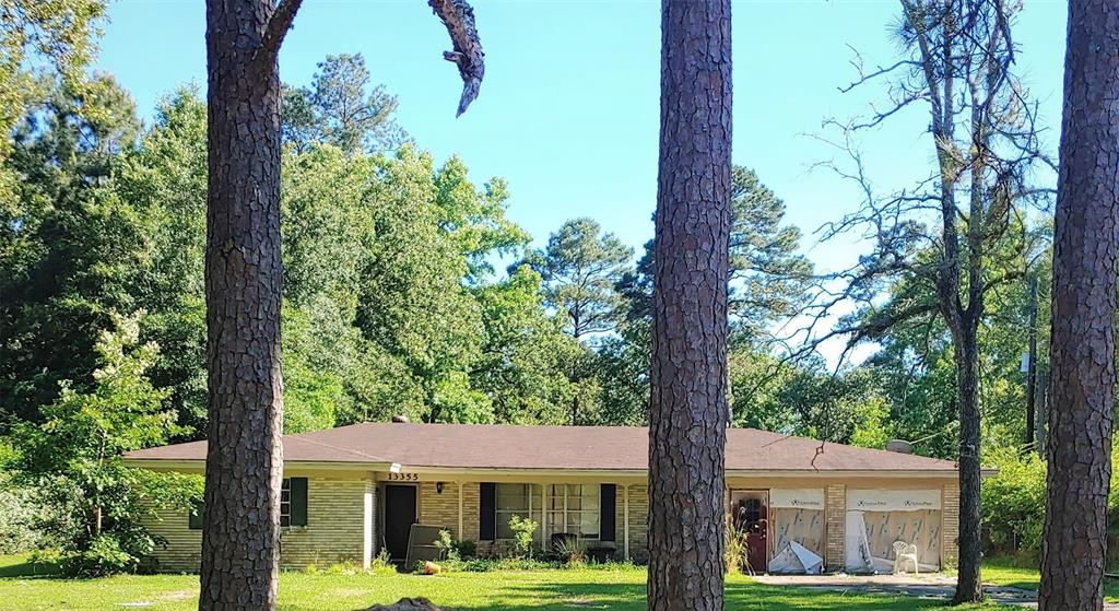 Bevil Oaks Real Estate Listings Main Image