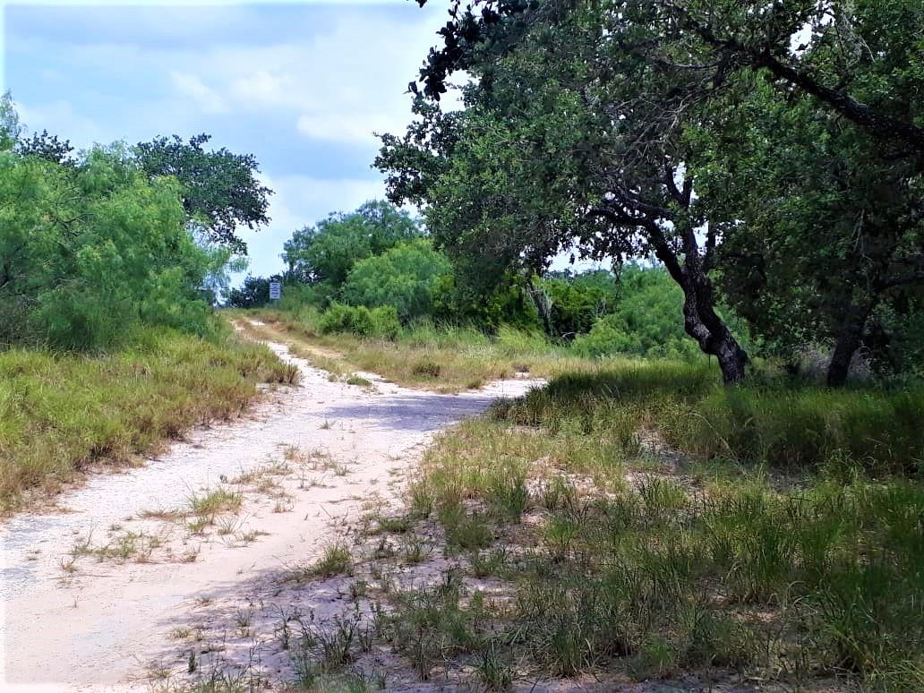 0 CO RD 408 Property Photo - Falfurrias, TX real estate listing