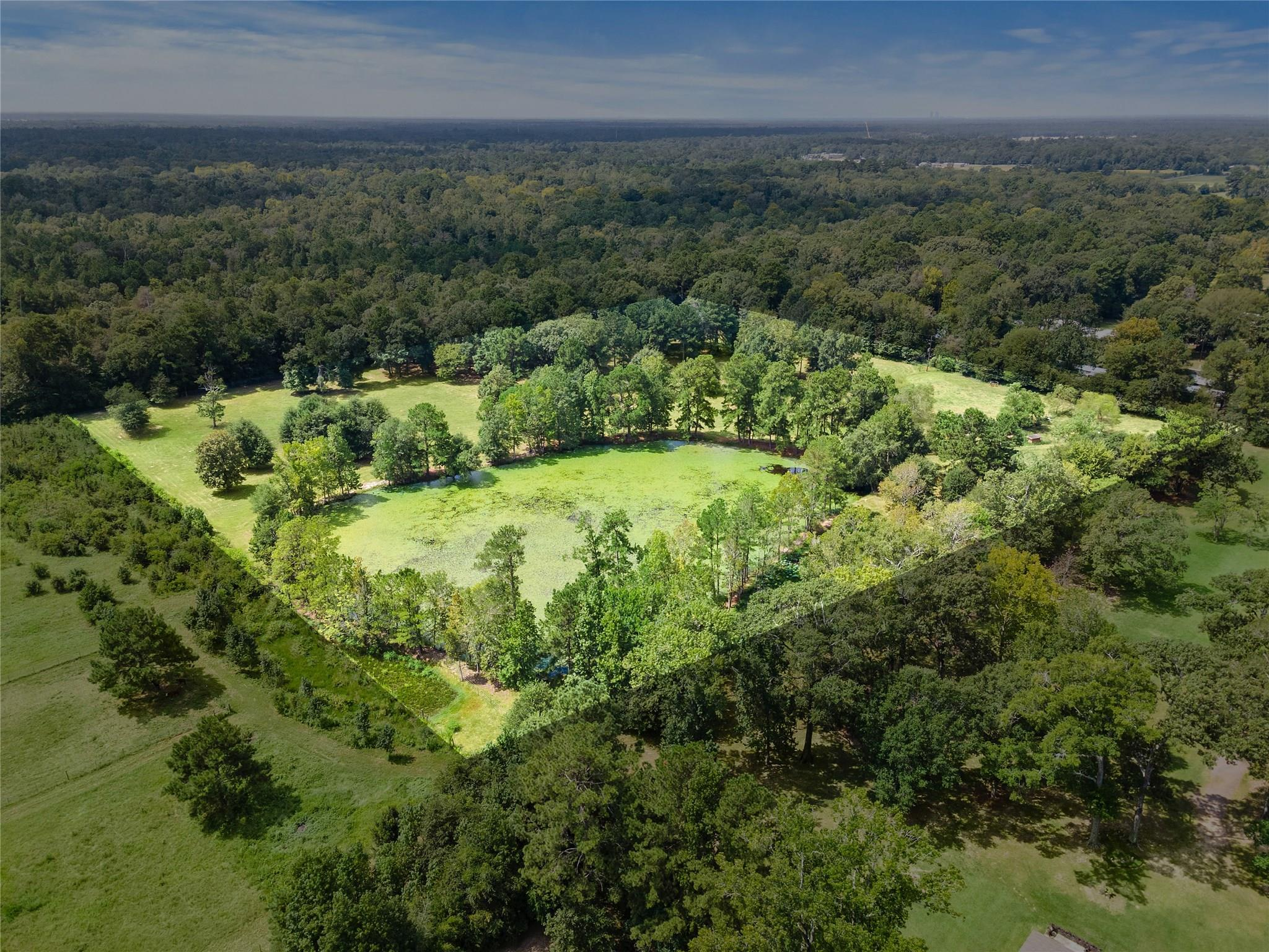 18380 Blackberry Road Property Photo - Conroe, TX real estate listing