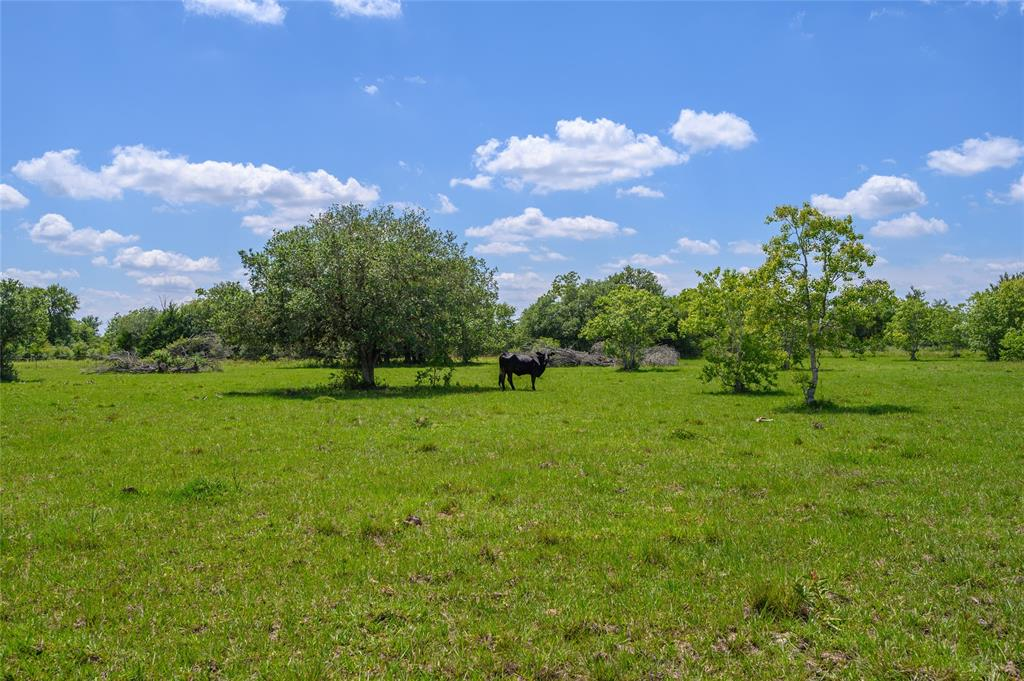 Tract 1 First Street Property Photo - Rock Island, TX real estate listing