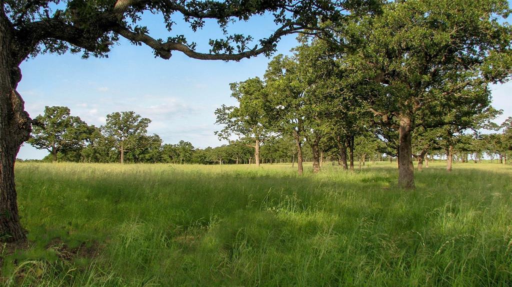02 Grimes Road, Mineral Wells, TX 76067 - Mineral Wells, TX real estate listing