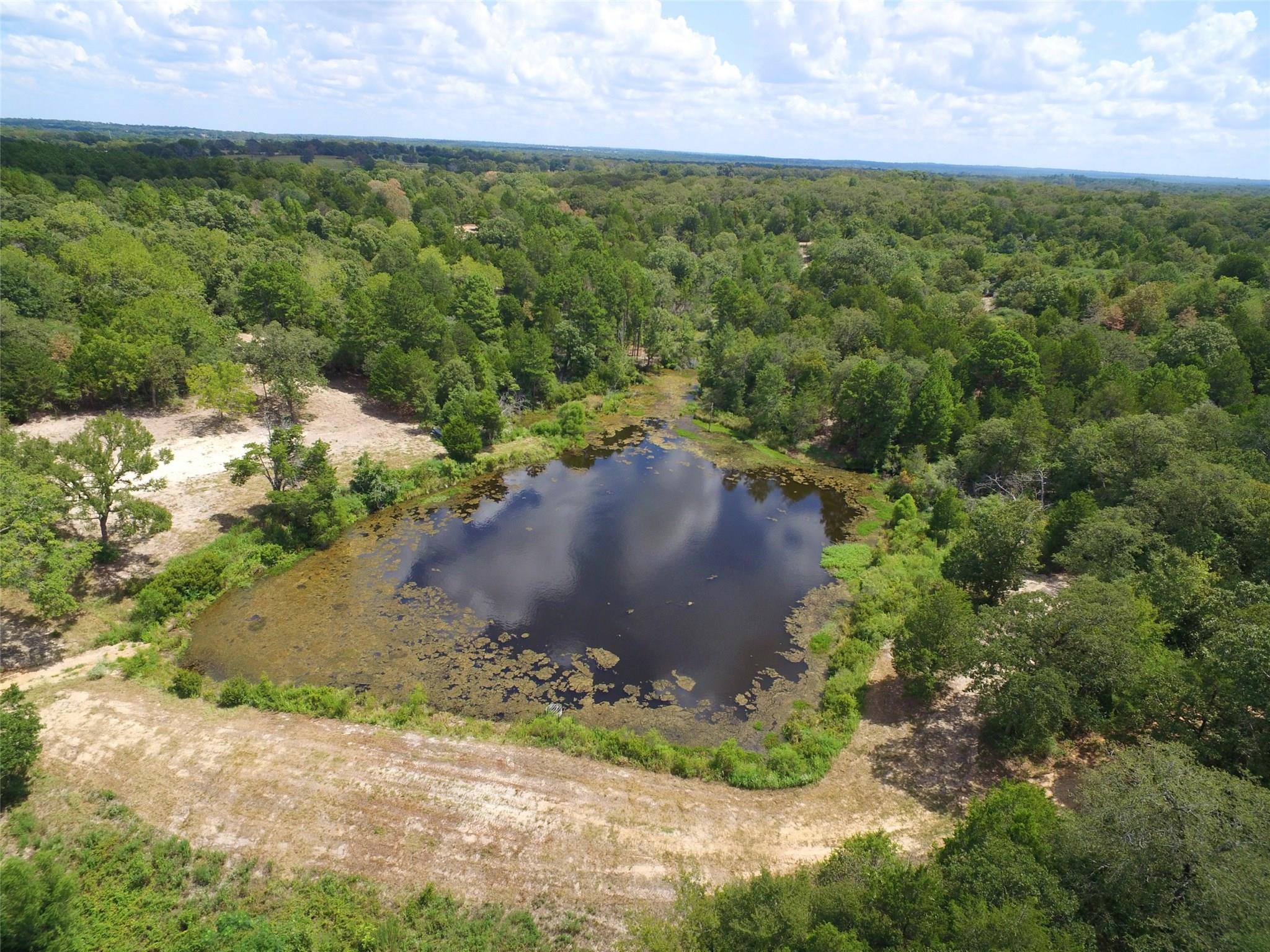 80 ac CR 302 Property Photo - Buffalo, TX real estate listing