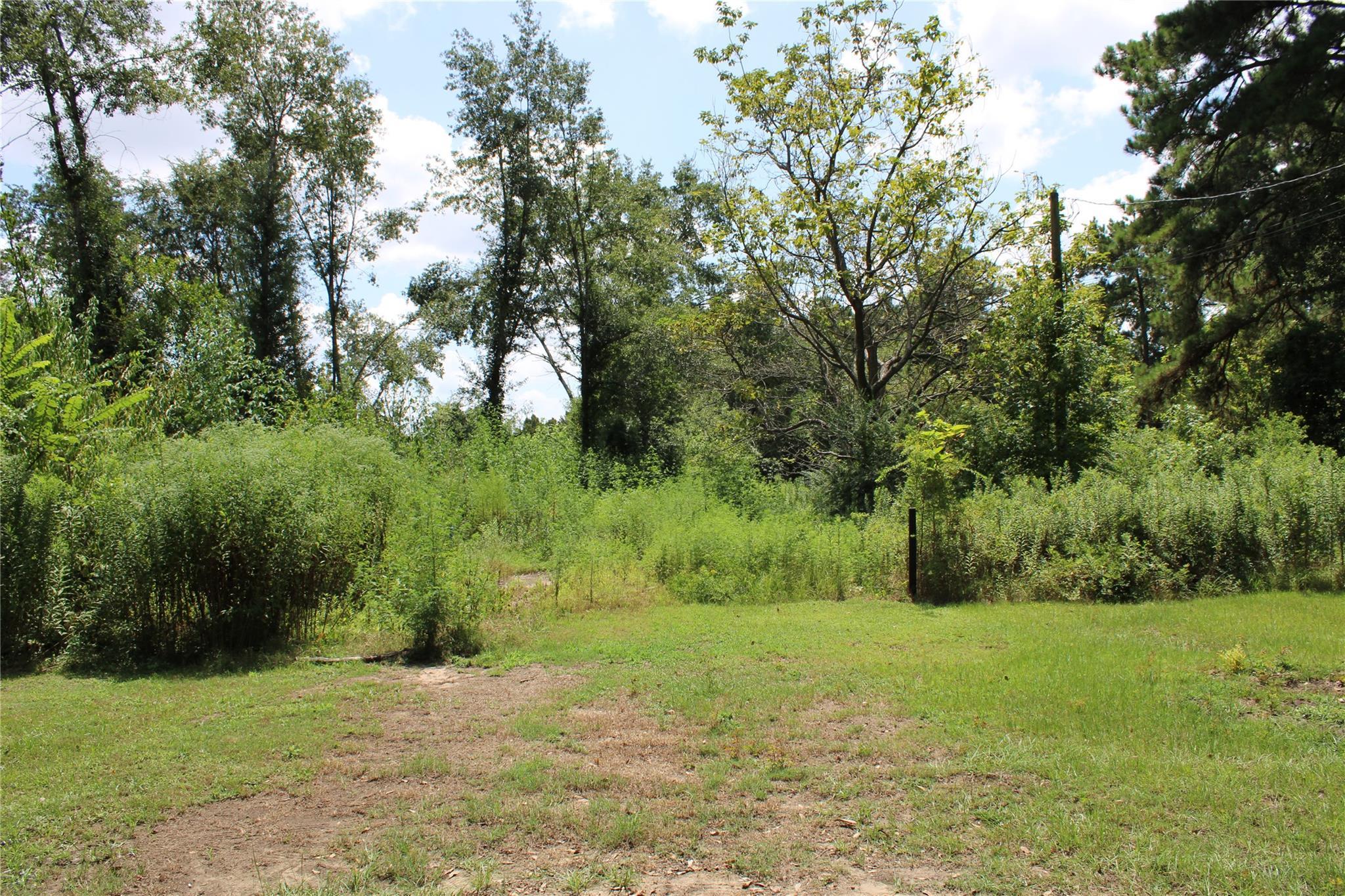 TBD Alma Street Property Photo - Troup, TX real estate listing