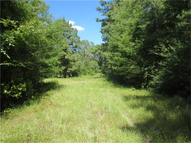 0000 NW CR 3555 Property Photo - Lovelady, TX real estate listing