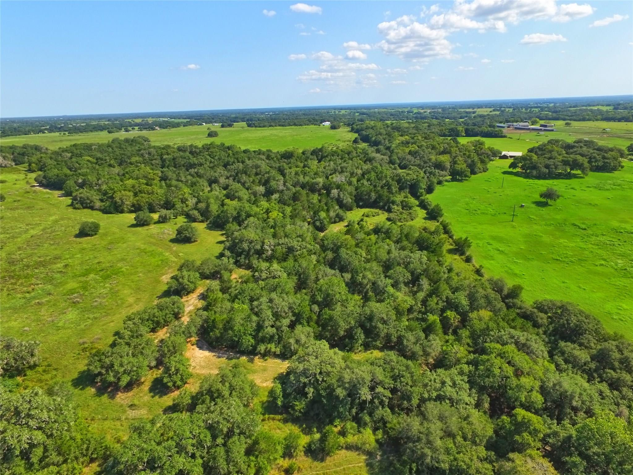 TBD County Road 270 Property Photo - Weimar, TX real estate listing