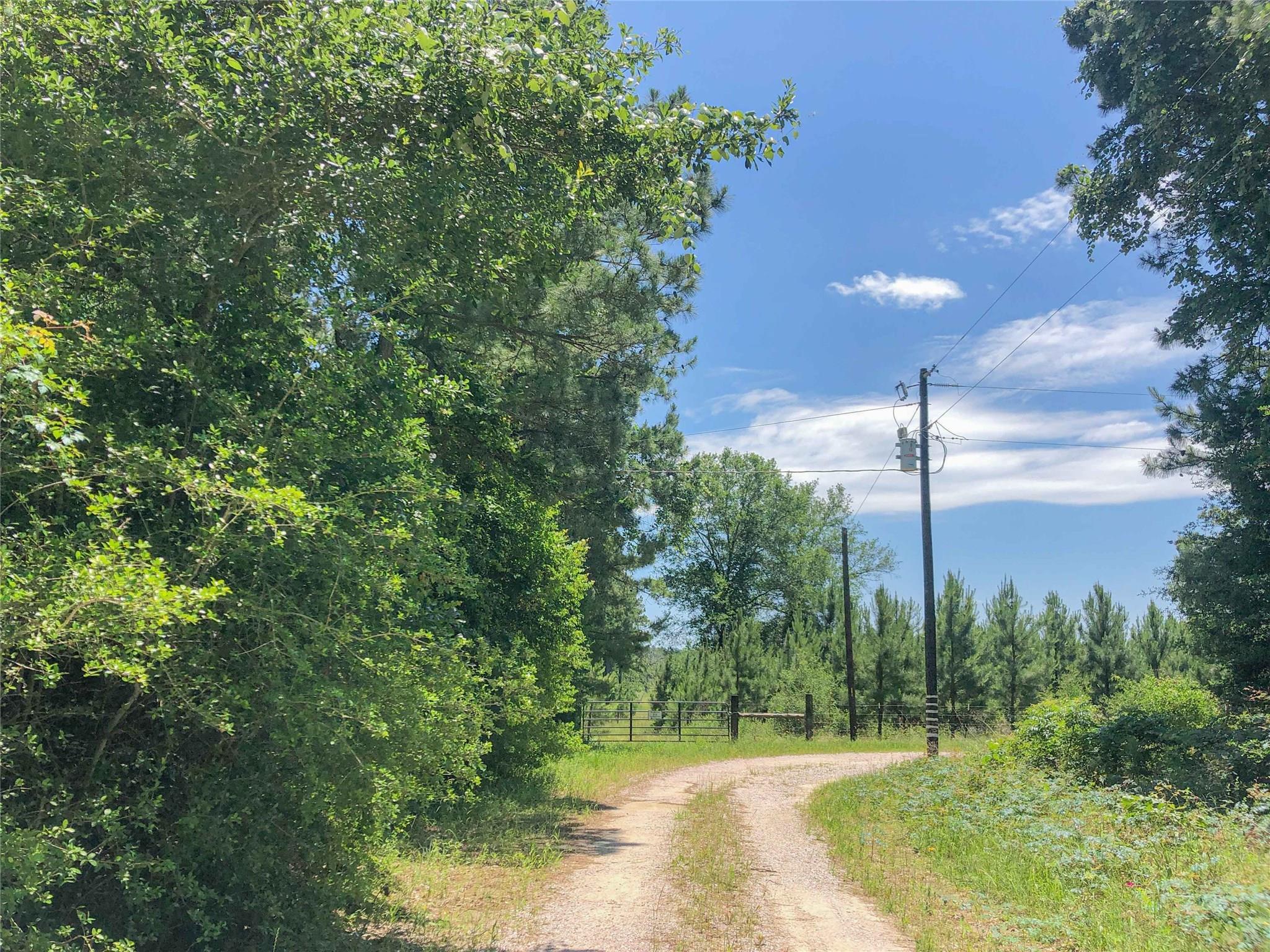 0 Copeland Road Property Photo - Huntsville, TX real estate listing