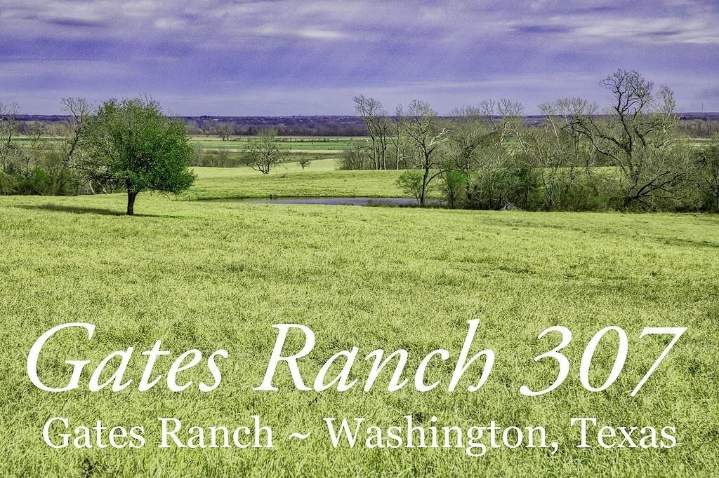 TBD 0 FM 2726 Road Property Photo - Washington, TX real estate listing