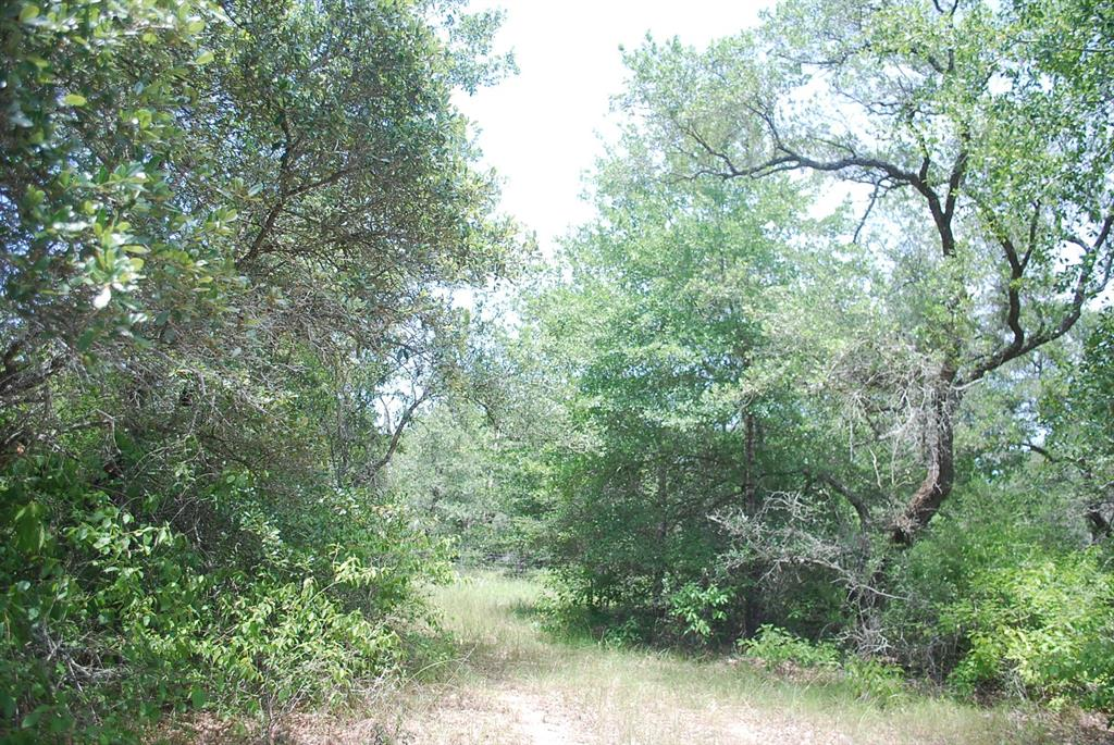 0 Sandy Creek Road Property Photo - Garwood, TX real estate listing