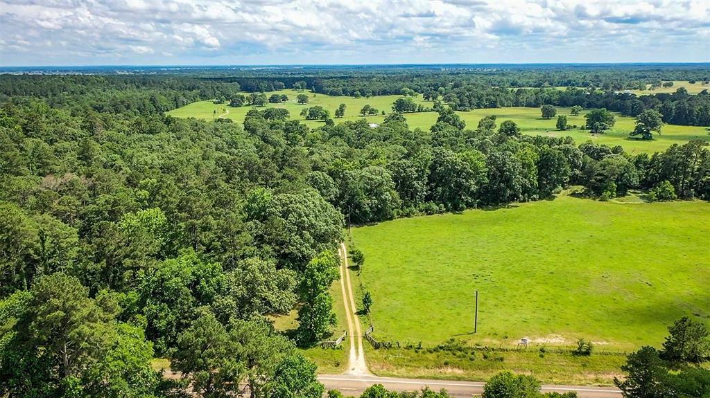 485 FM 230 Property Photo - Trinity, TX real estate listing