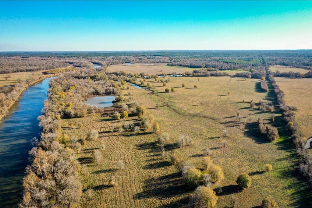 468 Acres Lost Indian Camp Road Property Photo - Huntsville, TX real estate listing