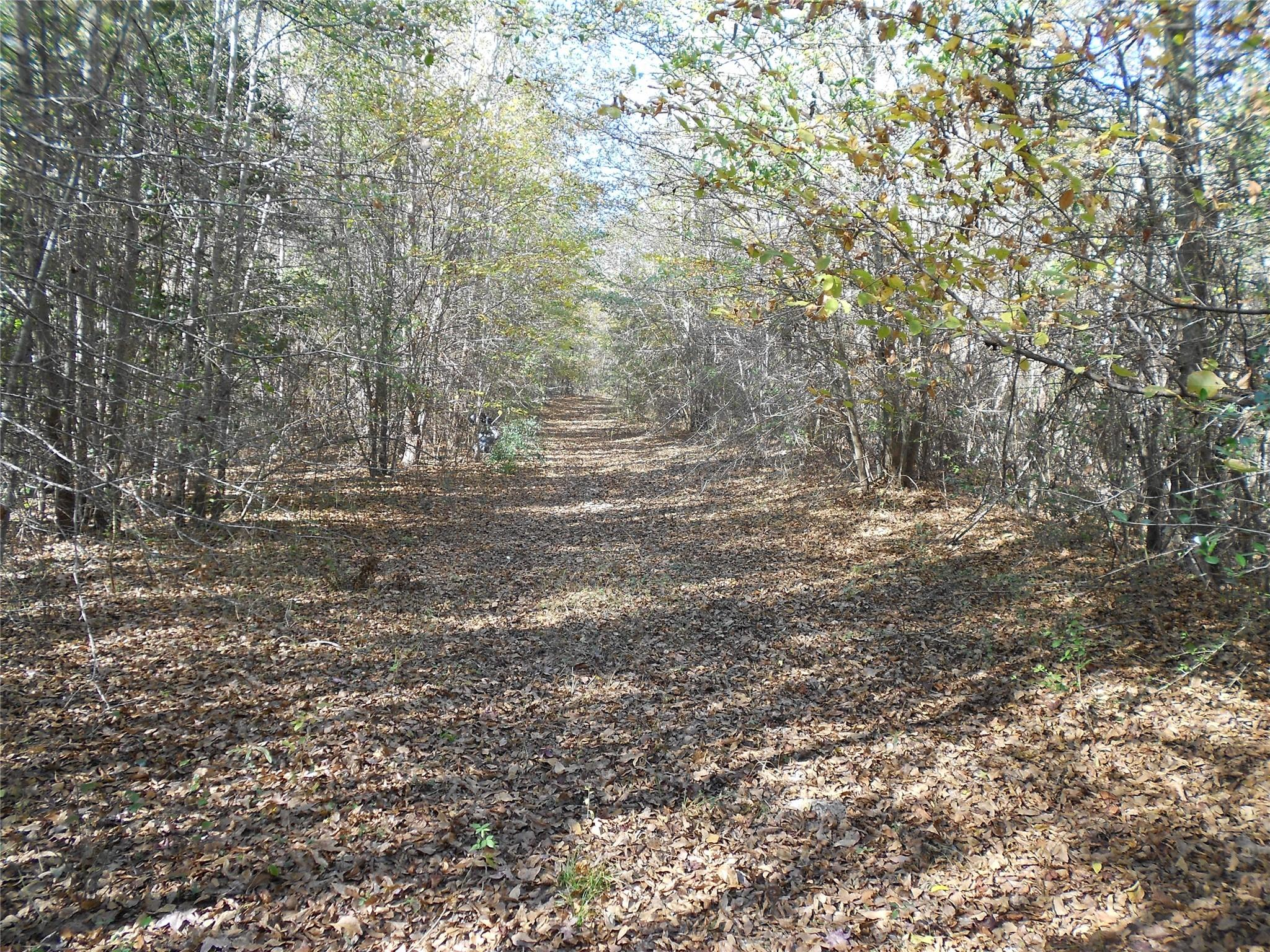 NA Womack Road Property Photo - Apple Springs, TX real estate listing