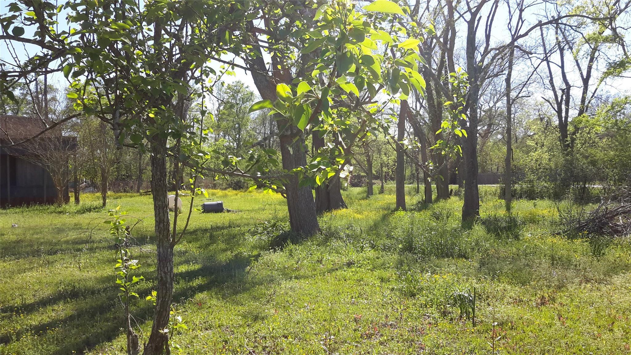 8826 W Fm 1960 Road Property Photo