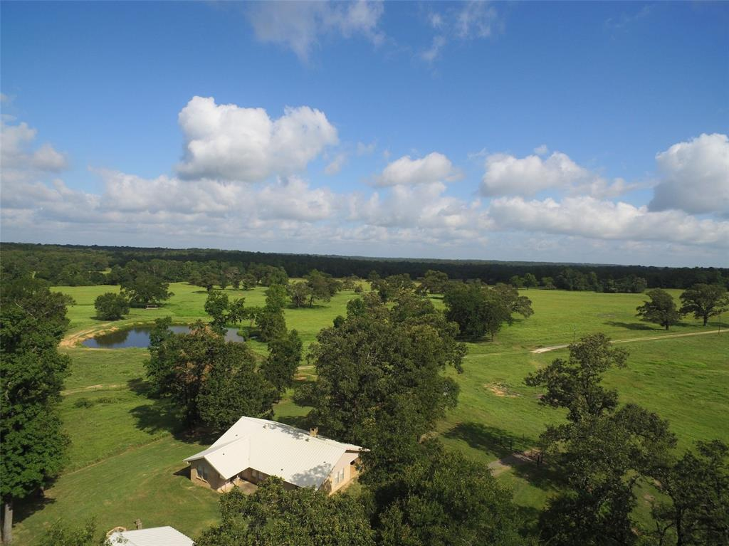 4405 CR 278 Property Photo - Buffalo, TX real estate listing