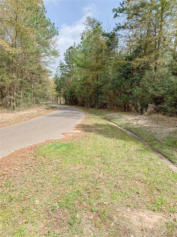 00 John Keely Road Property Photo - Zavalla, TX real estate listing