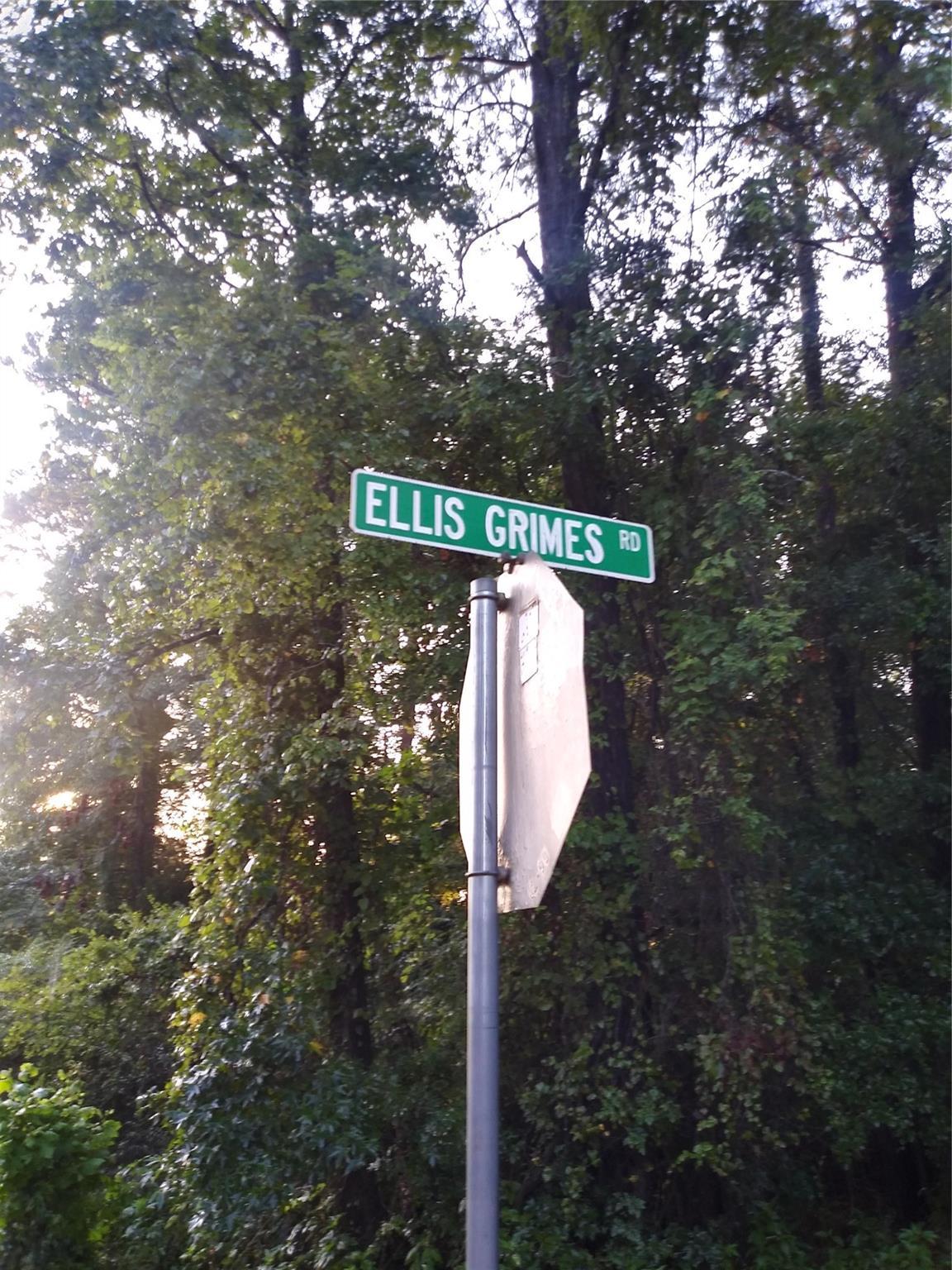 0 Ellis Grimes Road Property Photo - Goodrich, TX real estate listing