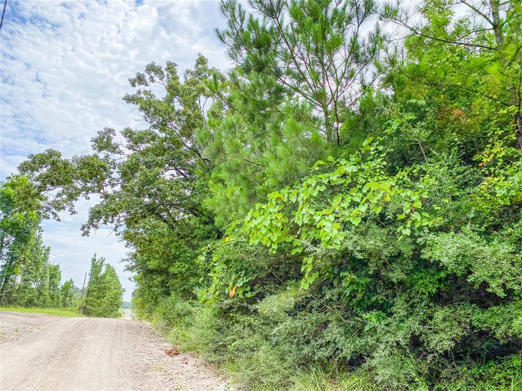 00000000 FM 2912 Property Photo - Groveton, TX real estate listing