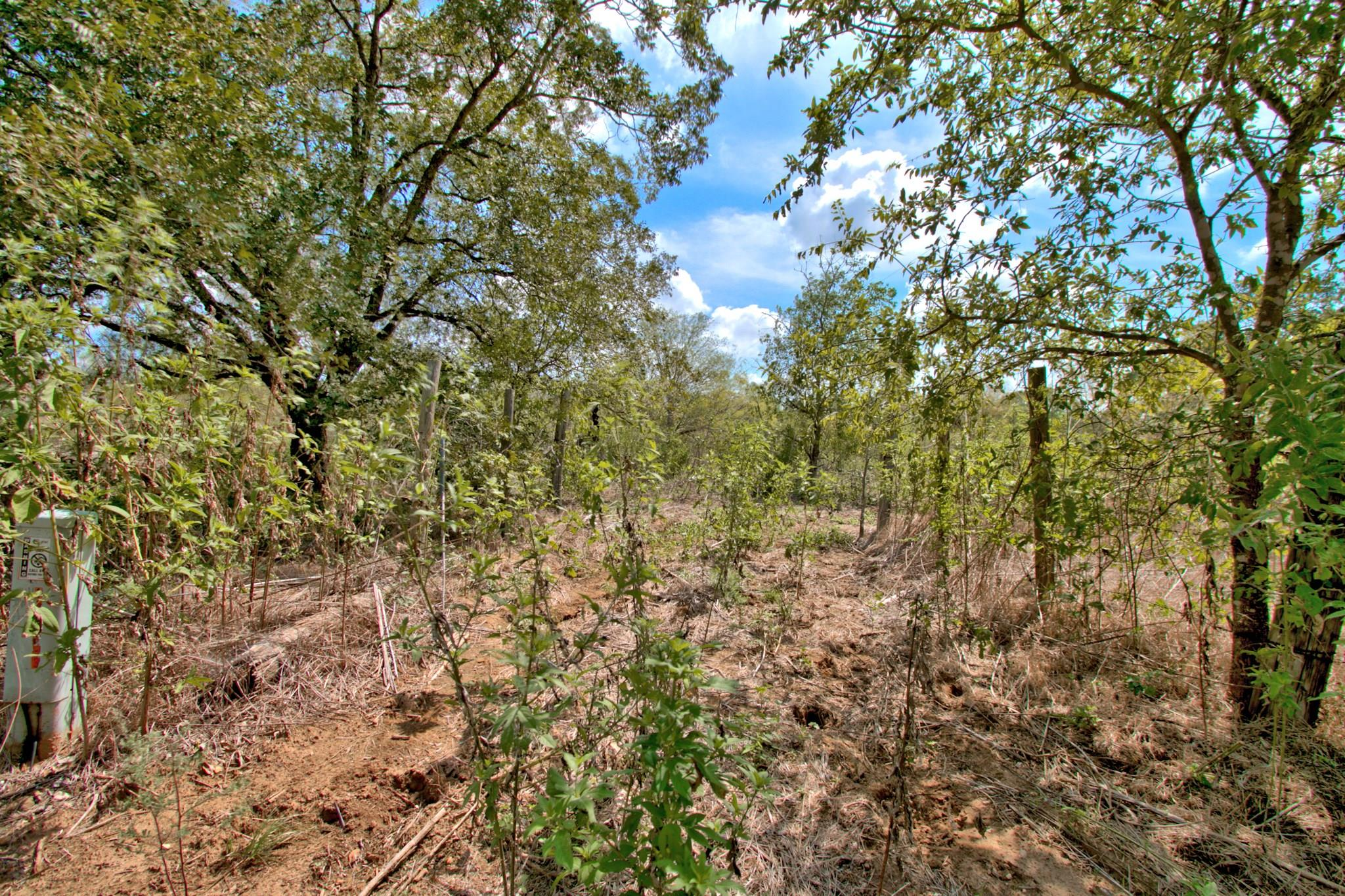 15870 Saint Hedwig Road Property Photo - St. Hedwig, TX real estate listing