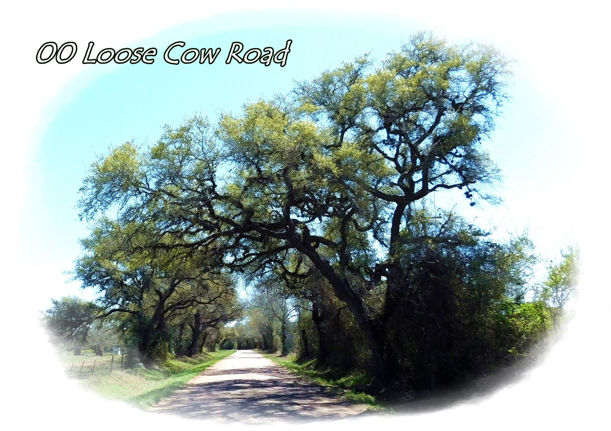 00 Loose Cow Road Property Photo - Garwood, TX real estate listing