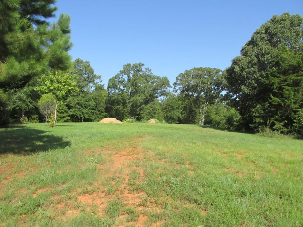 Lot 4R & 6R Murchison Street Property Photo - Palestine, TX real estate listing