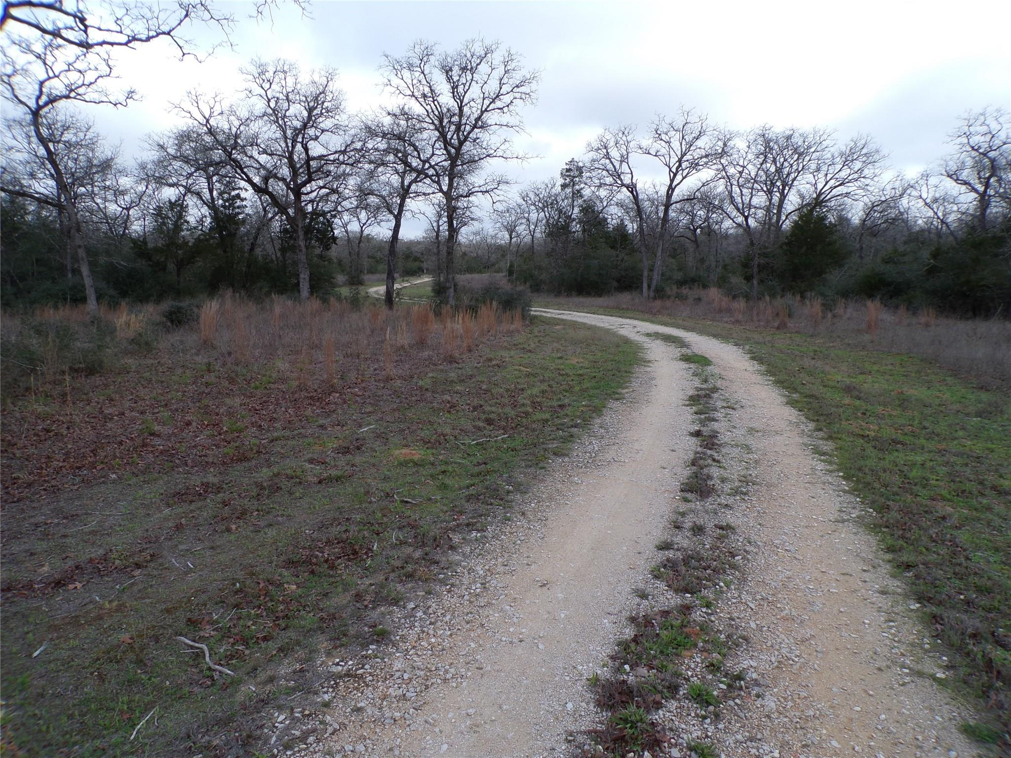 407 High Crossing Road Property Photo - Smithville, TX real estate listing