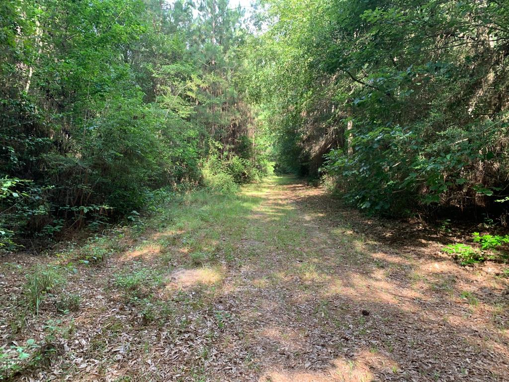 1965 C R 2252 Property Photo - Cleveland, TX real estate listing