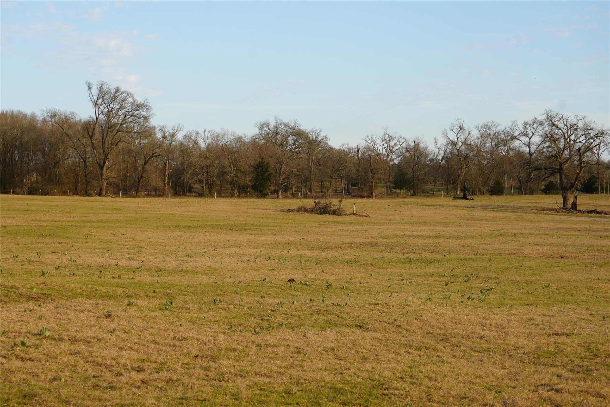 TBD FM 2150 E Property Photo - Midway, TX real estate listing