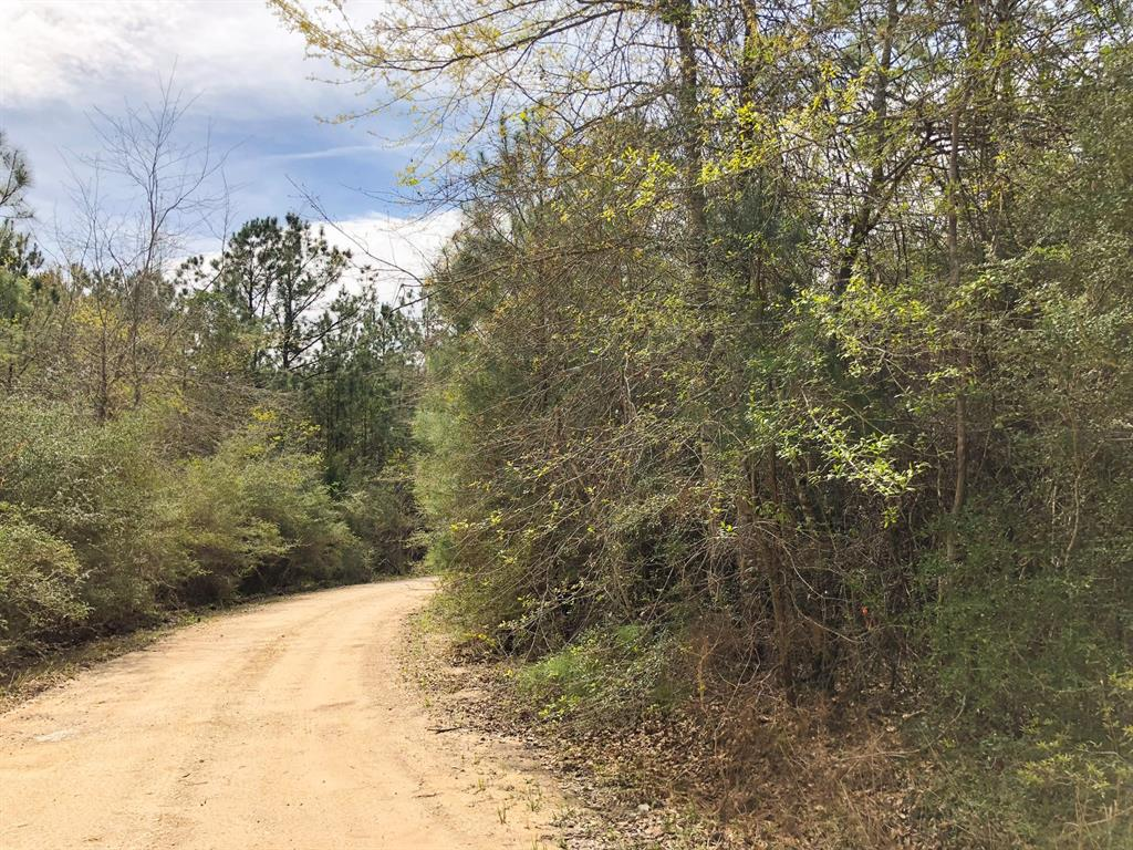 00 County Rd 3132 Property Photo - Orange, TX real estate listing