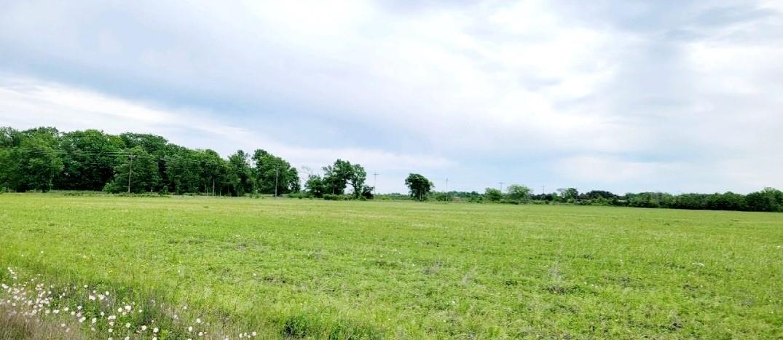 Tbd Farm To Market 1960 Property Photo