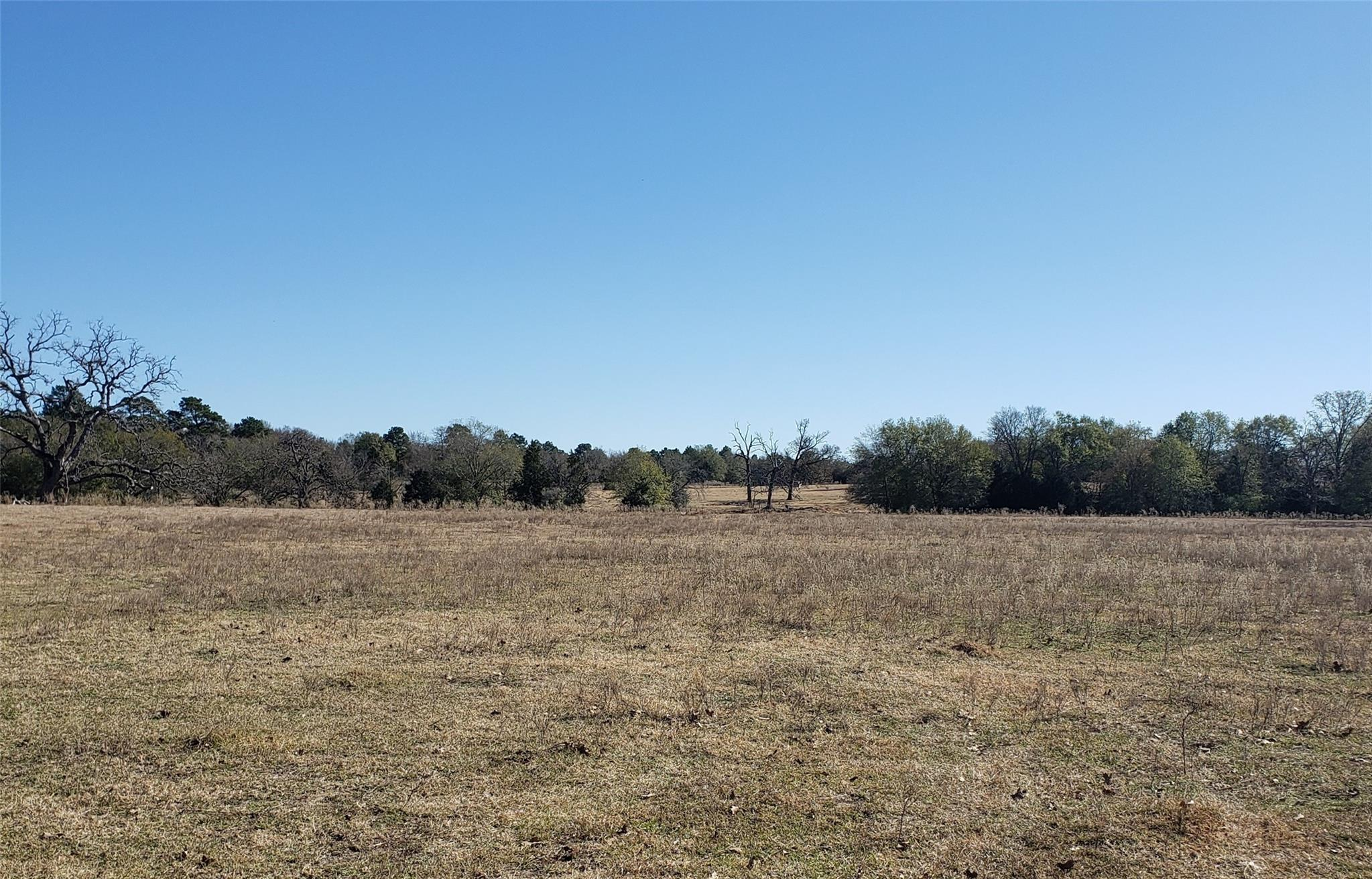 330 County Rd 691 Property Photo - Teague, TX real estate listing