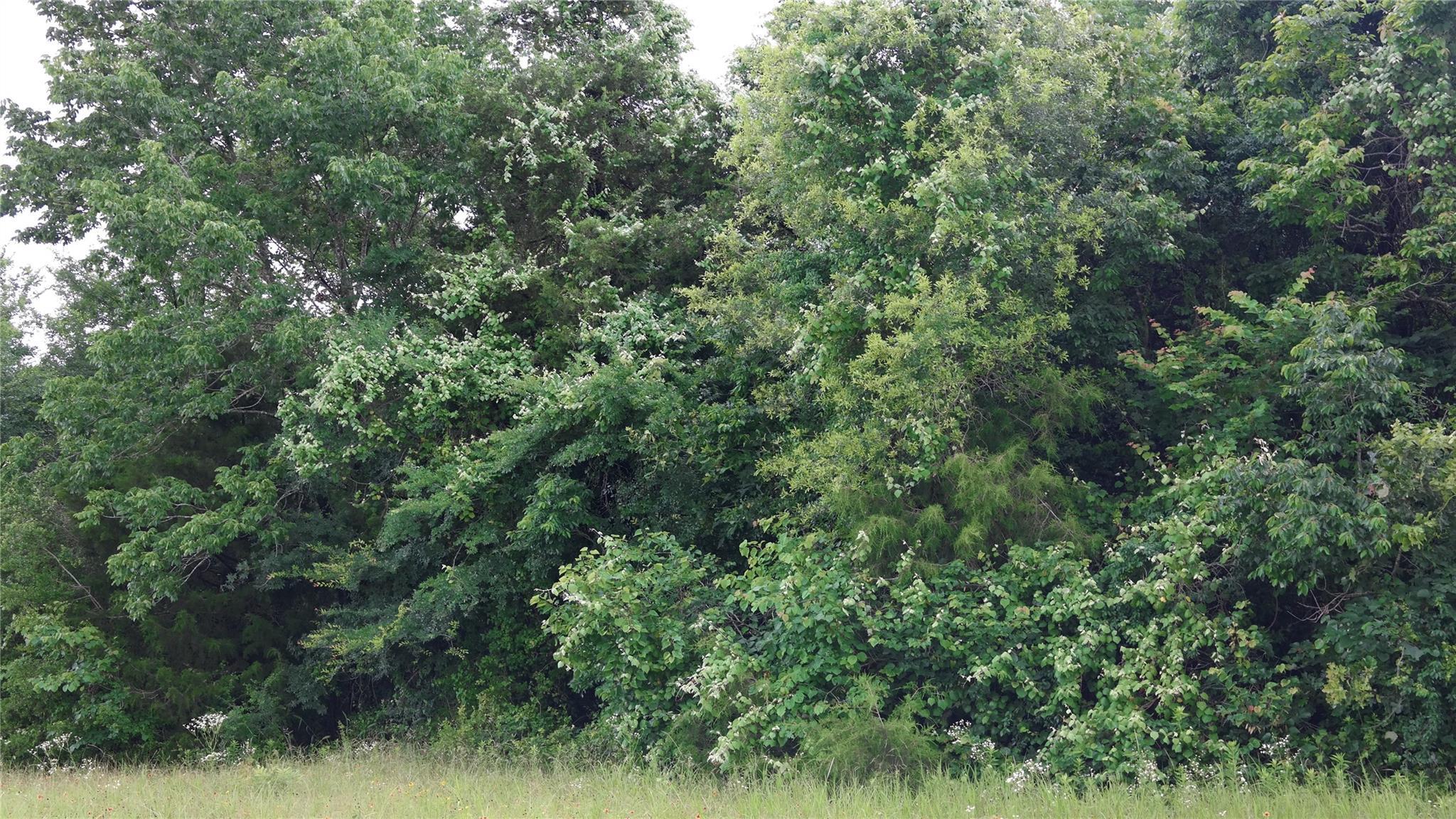 000 I 45 N Feeder Road Property Photo